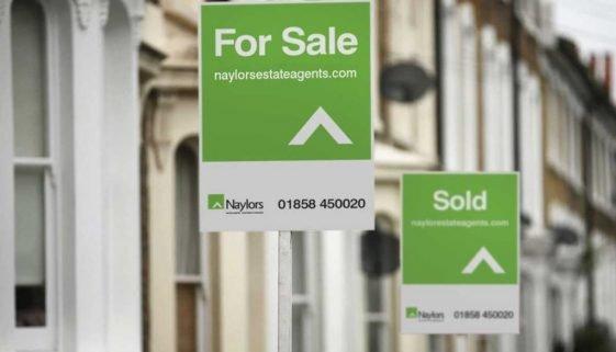 Naylors estate agents logo design